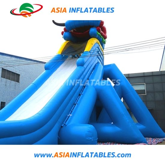 Giant Inflatable Water Slide/ Big Water Slides for Sale pictures & photos