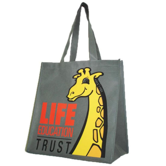 Stand up Custom Printed Loop Handle Non-Woven Bags (FLN-9005)