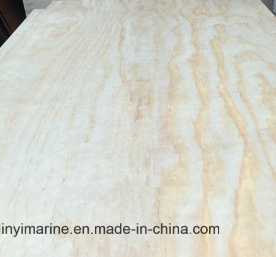 Poplar/Birch/Pine Plywood B/C Grade E1 Glue pictures & photos