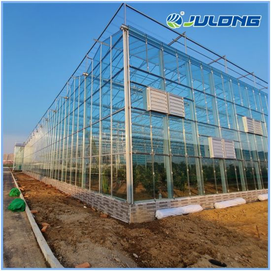 Long Service Life Multi Span Venlo Type Glass Greenhouse with Cooling System for Tomato/Lettuce/Pepper/Chilli Planting