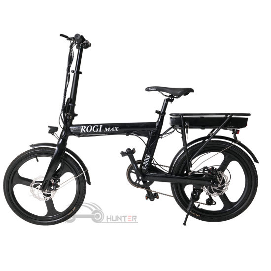 Light Weight 250W Motor Electric Bicycle Fold E Bike with Hidden Battery