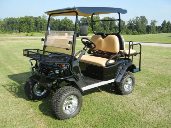 Electric Hunting Buggy, 2 Wheel Drive, 4 Seats, Eg2020asz, CE
