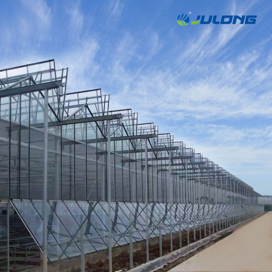Glass Greenhouse for Stock Farming / Flower House with Hydroponic System
