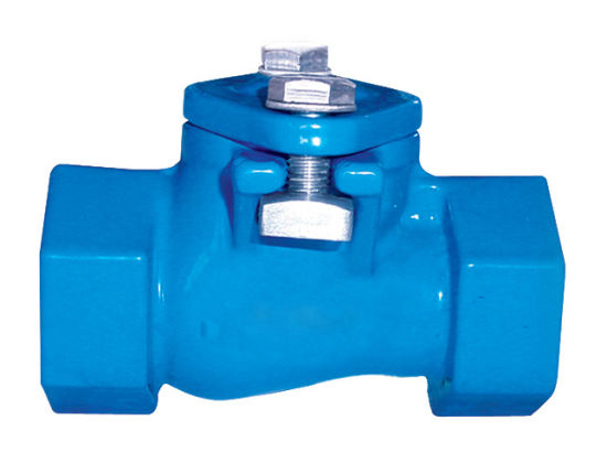 Cast Iron Bsp Thread End Ball Check Valve with PE Coating