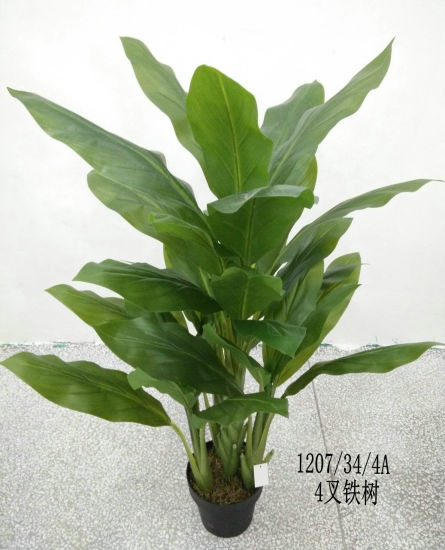 Best Selling Artificial Plants of Zebra GU1019152518 pictures & photos