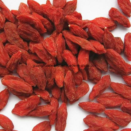 China Suitable Edible Dried Goji Berry With Health And Good Taste