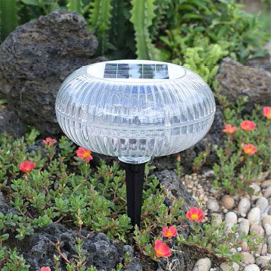 Outdoor Decorative High Quality LED Solar Lighting Lawn Light with Apple Cover for Garden Lighting