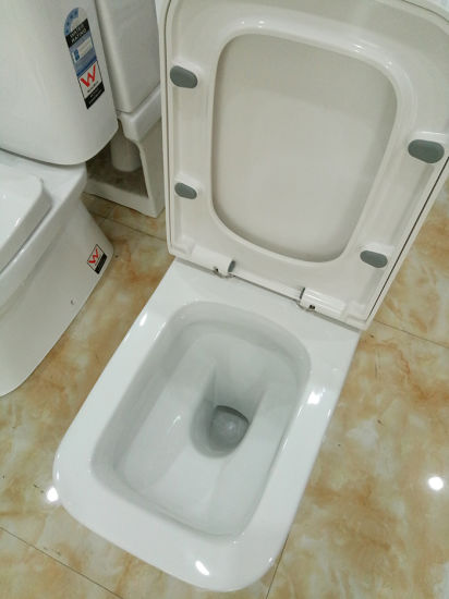 Sanitaryware Bathroom Products Ceramic Floor Mount Closet Coupled Toilet pictures & photos