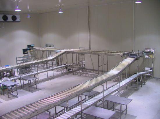 New Sanitation Meat Processing Conveyor Slaughtering Equipment