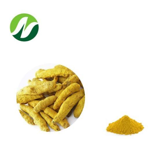 Good Quality Good Price China Supplier ISO 10%-95% Curcumin/Curcuminoids Curcuma Longa Turmeric Extract