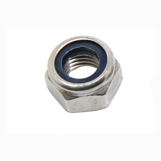 Stainless Steel SS304 SS316 Hexagonal Nylon Insert Lock Nut DIN985