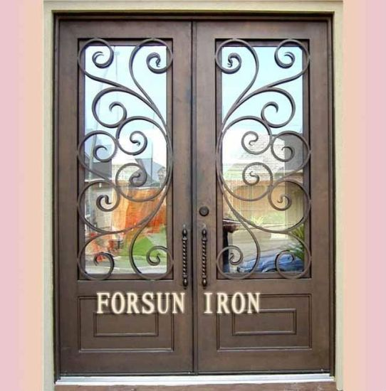 Metal Entrance Doors pictures & photos