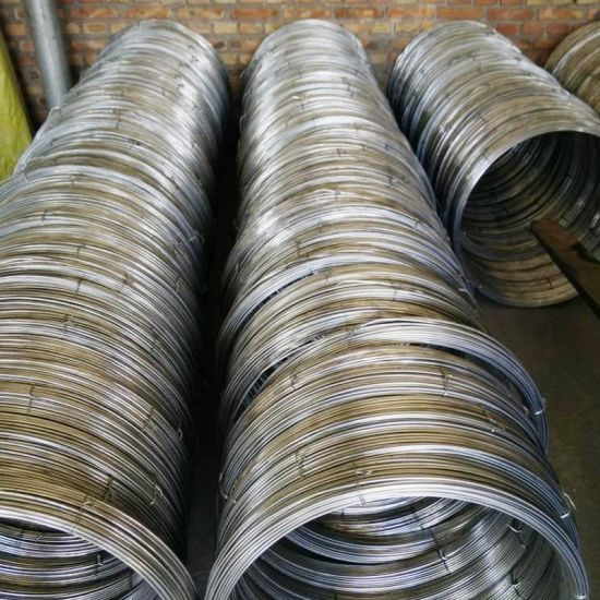 Galvanized Oval Steel Wire 17/15 for Agricultural Fencing
