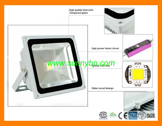 220V/100W IP65 LED Flood Light for Garden