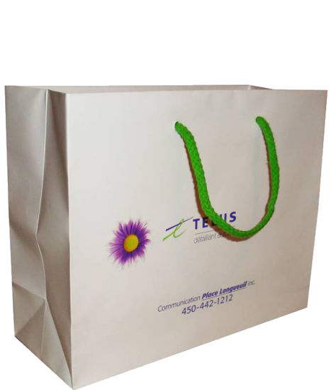 Paper Handle Shopping Bags Wholesale with Cheaper Price