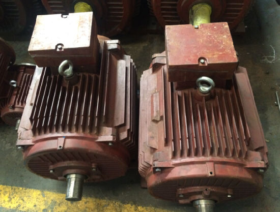 Y Series Cast Iron Three-Phase Induction Motor with CE pictures & photos