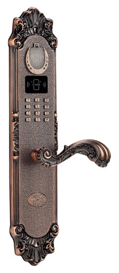Brass Fingerprint Access Control Lock with Password and IC Card pictures & photos