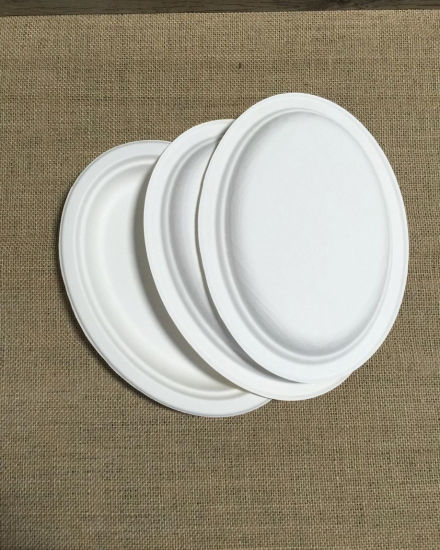 9\ Bagasse Round Paper Pulp Biodegradable Flatware Sugarcane Pulp Plate & China 9\