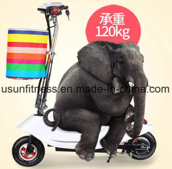 China Best and Cheap Electric Scooter for Adults Electric Chariot