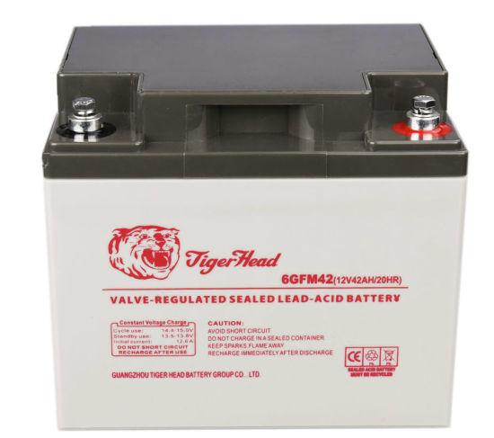 Inverter Battery 12V 42ah for Power Supply