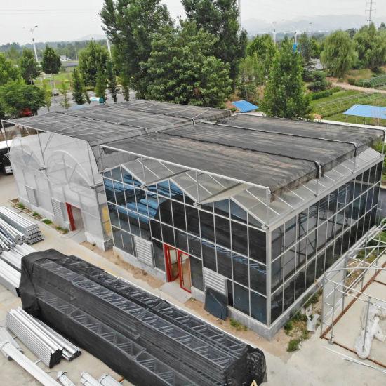 Light Deprivation Plastic Greenhouse for Pepper Lettuce