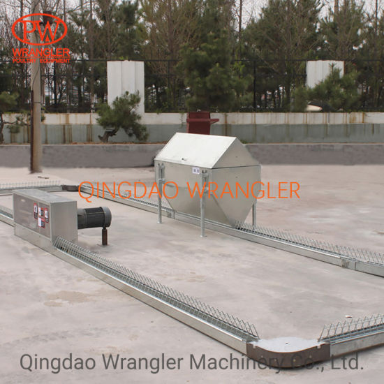 Poultry Chains Disc Cable Disc Chicken Chain Feeder System for Automatic Feeding System