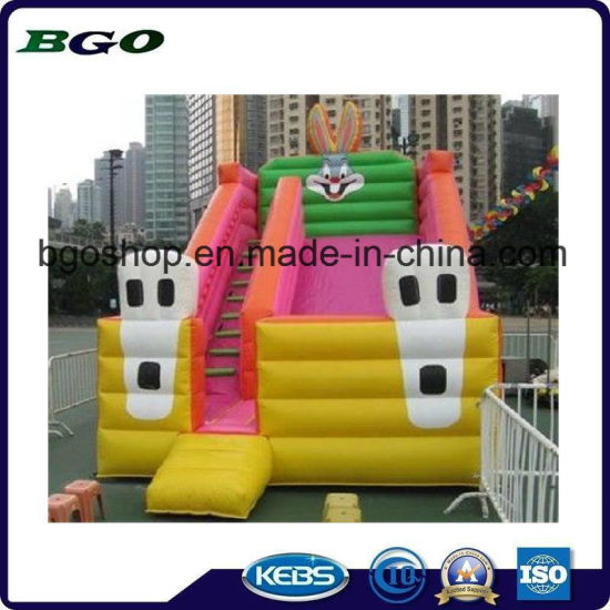 PVC Pirate Theme Inflatable Double Lane Slide pictures & photos