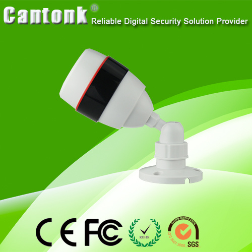 Hot Selling Plastic & Weatherproof IR Camera IP CCTV Camera pictures & photos