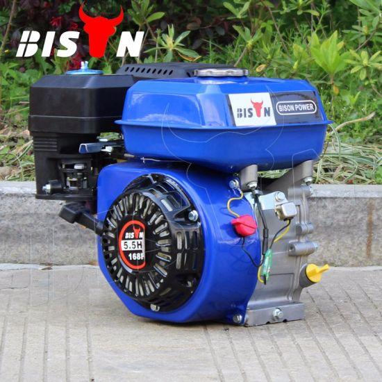 China bison manual start mini portable 7 hp gasoline engine 170f.
