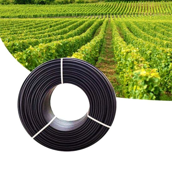 20mm Drip Irrigation LDPE Pipe for Agriculture pictures & photos