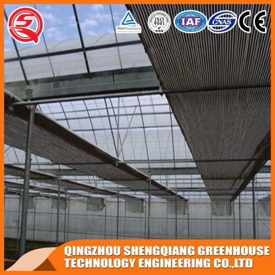 Vegetables/Garden/Flowers/Farm Multi Span Plastic Greenhouses pictures & photos
