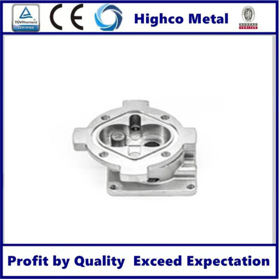 OEM Stainless Steel Pump Body Cover Body Die Casting Products pictures & photos
