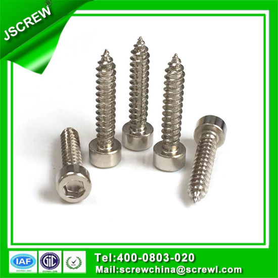 China Leading Hardware Factory Stainless Steel Hex Socket Head Cap Screws pictures & photos