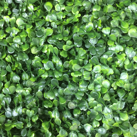 China Natural Looking Artificial Plant Vertical Green Wall Garden ...