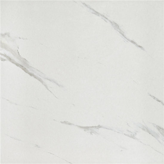 Matt Finished Look Like Marble Tile Rustic Tile for Floor (SH6001)