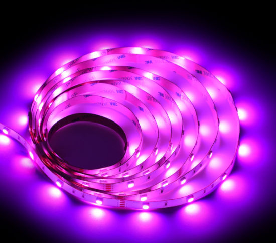 New Style Wholesale 5050 RGB Rope Festival Atmosphere LED Strip Light for Bar