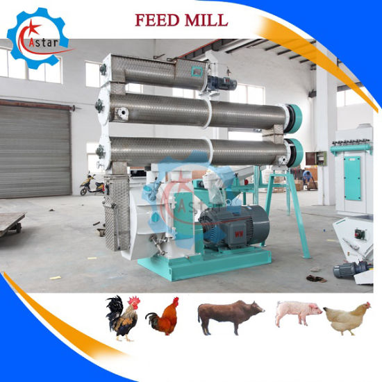Automatic Farming Broiler Poultry Equipment for Feeding Animal