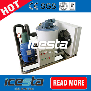 5000kg Dry and Clean Flake Ice Machine for Fishery
