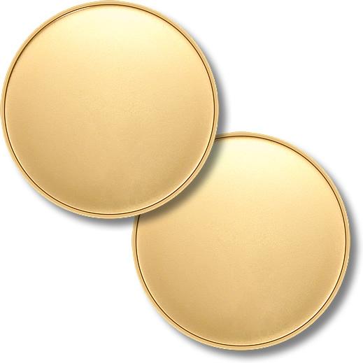 Wholesale 3D Hard Enamel Logo Gold Zinc Alloy Blank Challenge Coin