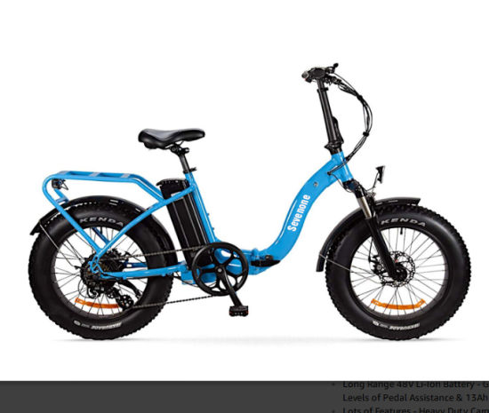 Wholesale 500W Bafang Rear Motor Foldable blue Electric Bikes pictures & photos