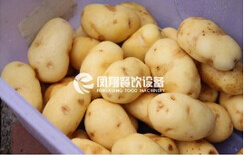 Brush Washing Peeling, Washer Type, Ginger/Carrot/Lotus Root Washer and Peeler with Ce Approved pictures & photos