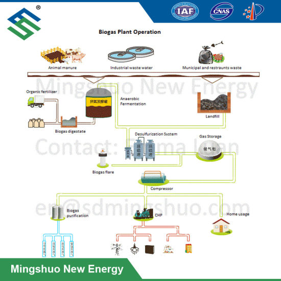 China Biogas Plant for Brewing Distillery Plant Wastewater