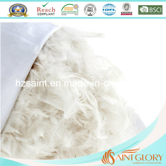 China Supplier Hot Selling Feather Cushion Inner for Wholesale pictures & photos