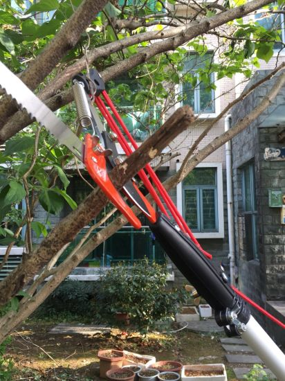 China Tree Pruner And Saw Garden Tools For Branches Cutter China Tree Pruner And Saw Price