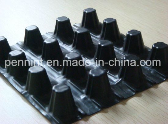 Earthwork Plastic Draining Sheet Dimple Drainage Board pictures & photos
