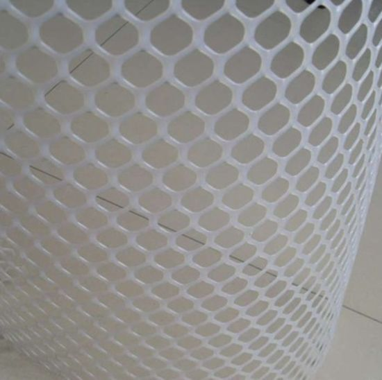 Top Quality Plastic Flat Mesh/Best Price Plastic Flat Mesh/Plastic Flat Mesh pictures & photos