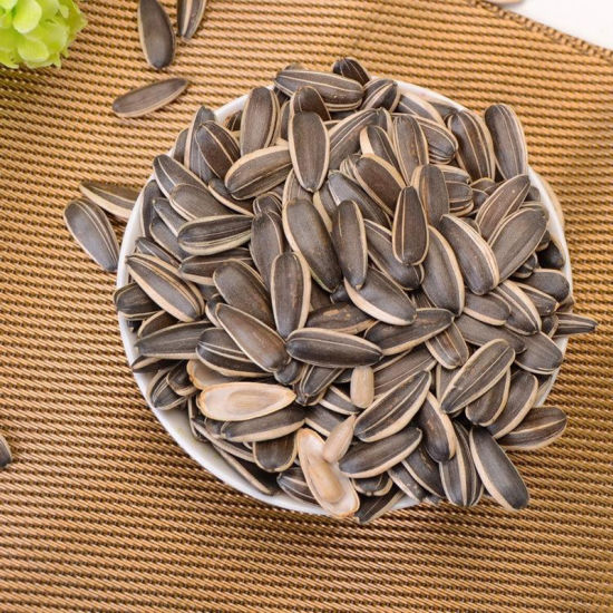 361 Sunflower Seed From Inner Mongolia China