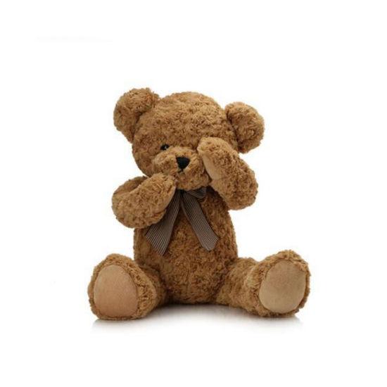 Valentines Day Gift Lovely Teddy Bear
