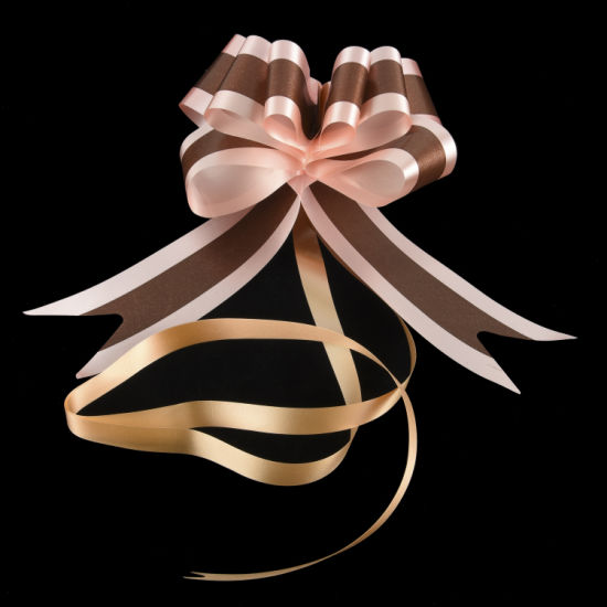 Plastic Pull up Bows Ribbons Gift Wrapping Bow Flower Wedding Decororation pictures & photos