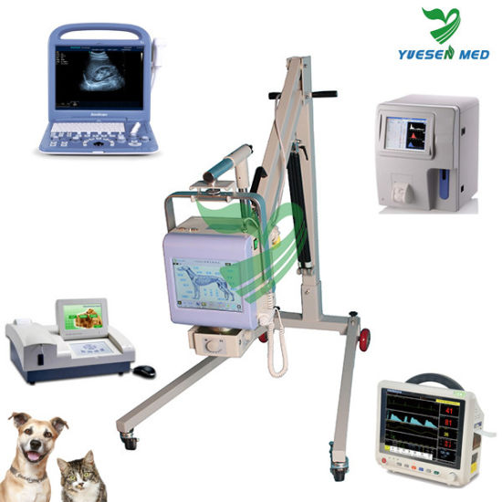 3-Channel Veterinary ECG Machine Ysecg300gv pictures & photos